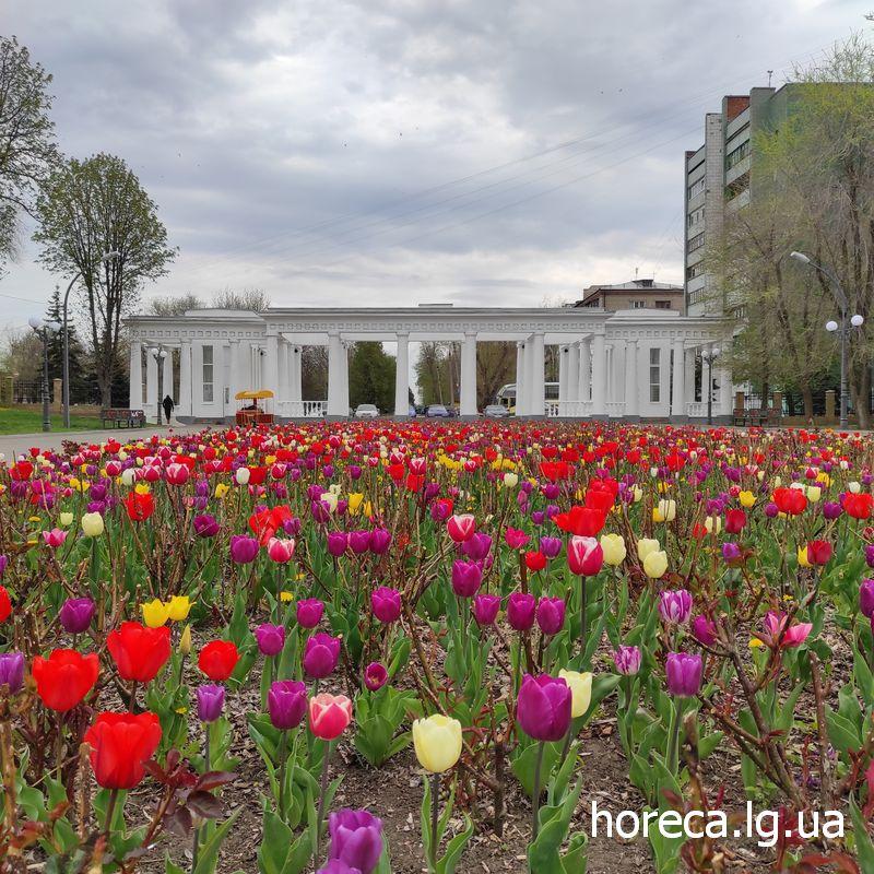 Парк Горького Луганск ЛНР